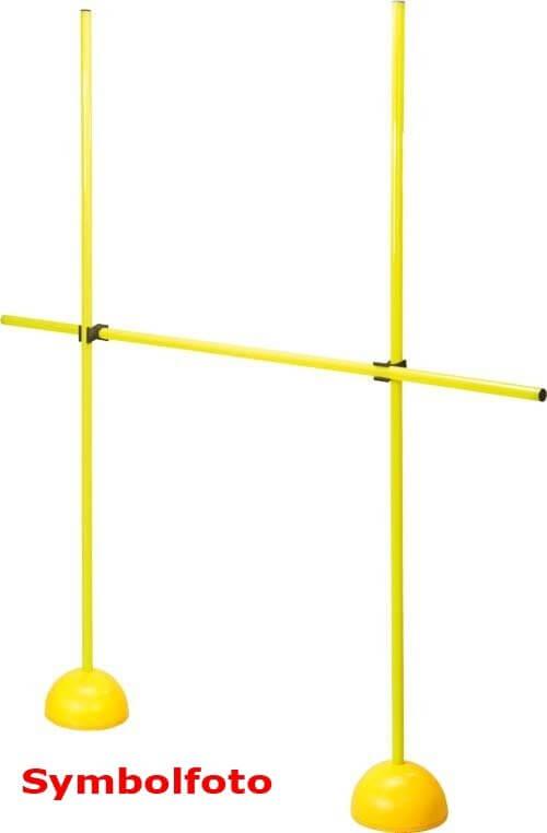 Pro's Pro Multi-Hürden-Set 170 cm