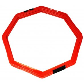 Pros Pro Agility Grid Octagon 6er